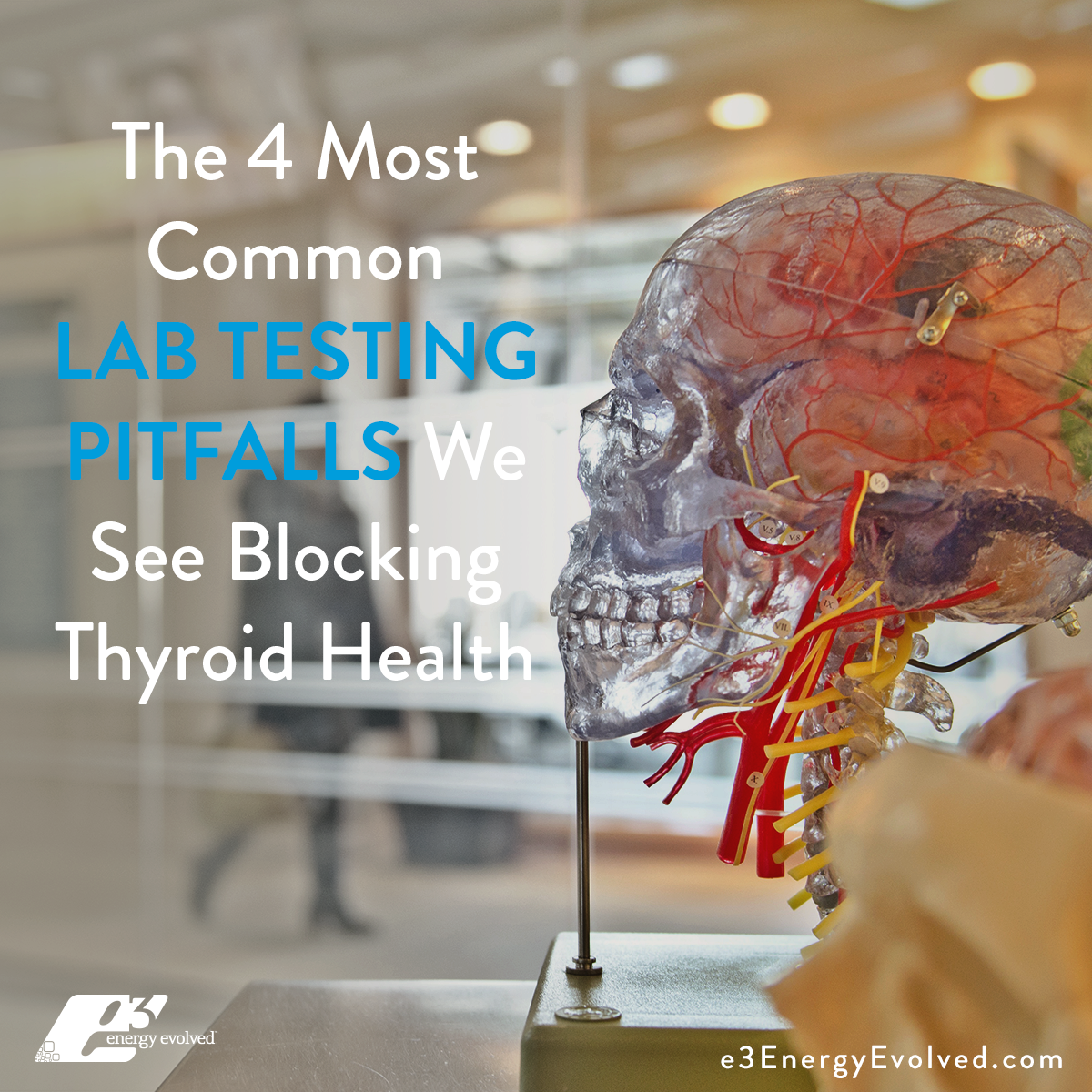 lab testing, diagnostics, thyroid labs, misdiagnosis, thyroid disease, thyroid health, women's health