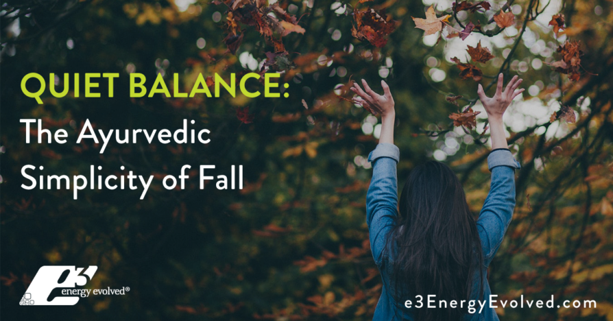 e3-Energy-Evolved-Blog-Fall-Simplicity